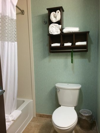 Hampton Inn Suites Wheeling - The Highlands: Super clean and new bathrooms!!! I am very picky and this bathroom was one of the cleanest ever!
