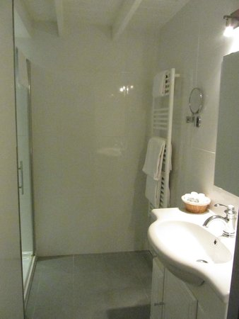 Le XII de Luynes : Bathroom with shower