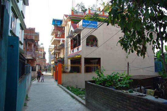 Blue Mountain Homestay: Blue Mountain Home Stay