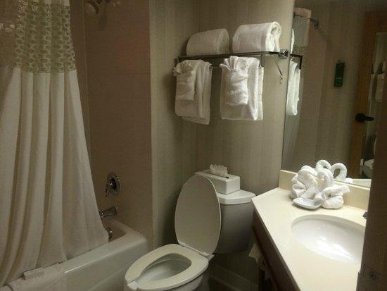 Hampton Inn St. Louis/St. Charles: Bathroom