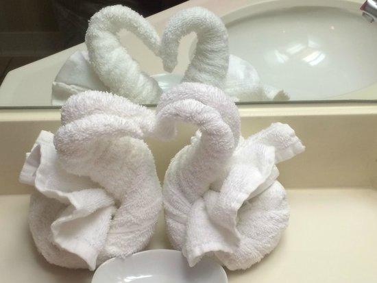 Hampton Inn St. Louis/St. Charles: Swans were a nice detail