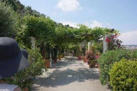 Hotel San Francesco al Monte: 庭2