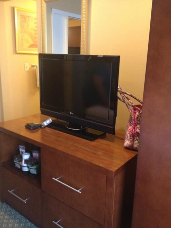 Comfort Suites Oakbrook Terrace: Bedroom television