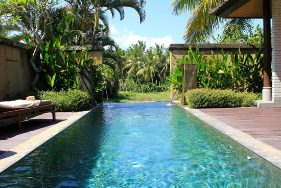 The Chedi Club Tanah Gajah, Ubud, Bali – a GHM hotel: Pool overlooking paddy fields at the villa
