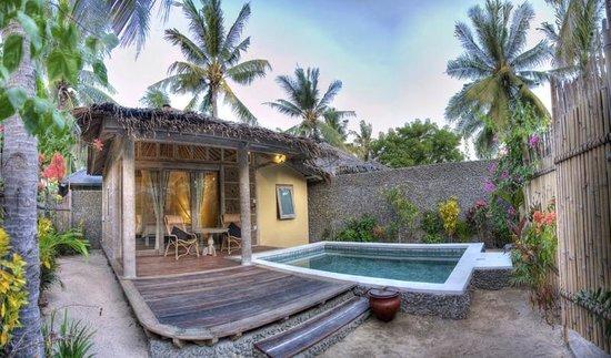 Les Villas Ottalia : The villa with private pool and garden