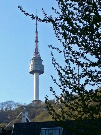 Guesthouse The Hill: N Seoul Tower ( View from my room)
