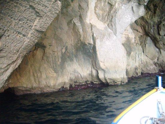 Blue Grotto (Il-Hnejja) : cd groty