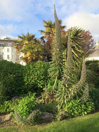 Royal Bath: Hotel gardens