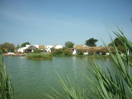 L'Estelle en Camargue : L'hôtel