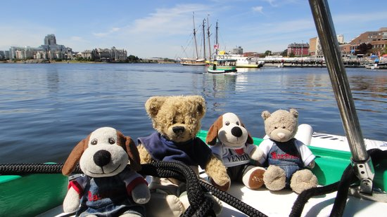 Victoria Harbour Ferry : All aboard!