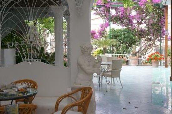 Hotel Gatto Bianco: ホテル 庭1