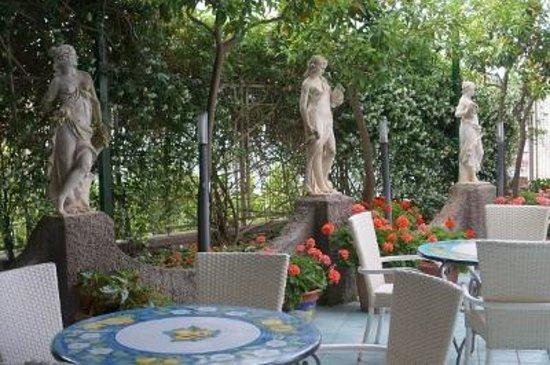 Hotel Gatto Bianco: 庭2