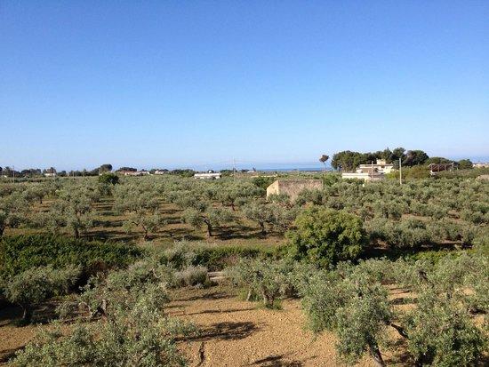 Il Cuore di Dioniso Dimora D'Epoca : view from room