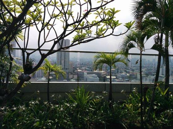 Pan Pacific Manila : Rooftop garden
