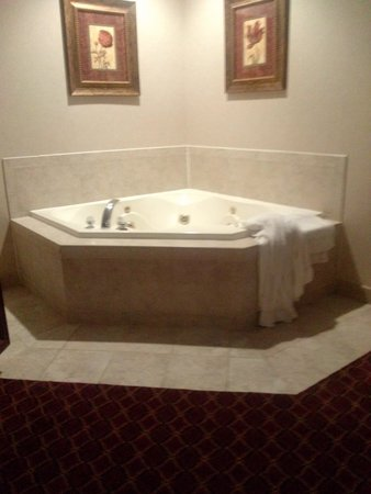 Cocca's Inns & Suites Albany Airport: whirlpool
