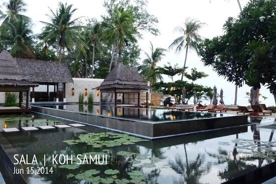 SALA Samui Choengmon Beach Resort: The lap pool (the black pool)