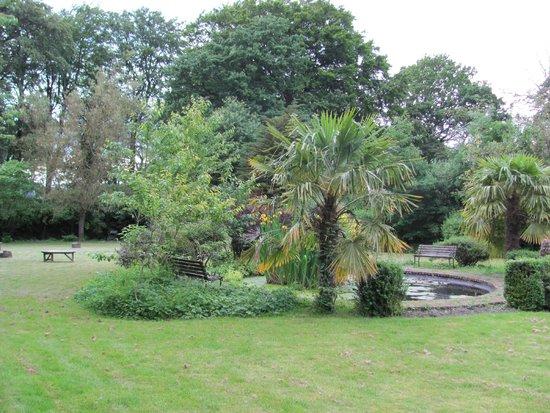 Sniperley Hall : Pond