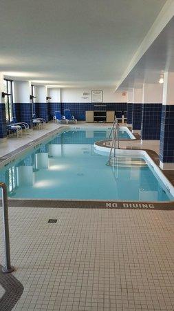 Edmonton Marriott at River Cree Resort : Large clean pool