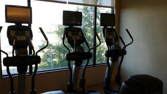 Edmonton Marriott at River Cree Resort : Fitness room