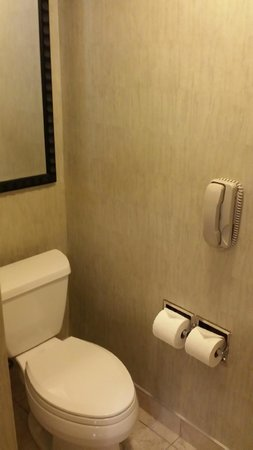 Edmonton Marriott at River Cree Resort: Bathroom 1