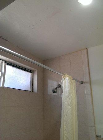 Americas Best Value Inn: Restroom Window in Shower/Tub