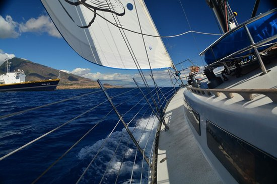 Scotch Mist Sailing Charters: This is REAL sailing!