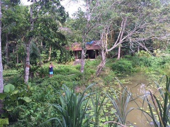 Apa Villa Illuketia: Nature