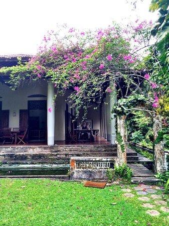 Apa Villa Illuketia: the grounds