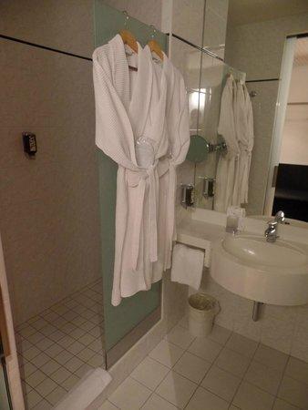 Hotel Allegra: The bathroom