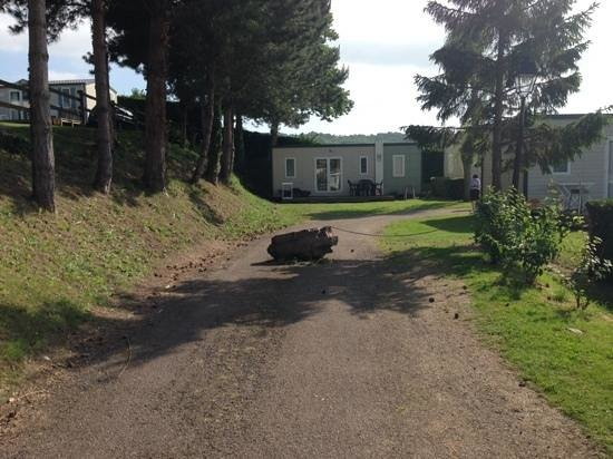 Camping La Vallée : the boulder and chain blocking entrance to our mobile which is around the corner