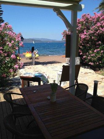 Golden Key Hisaronu: Otelin plajı