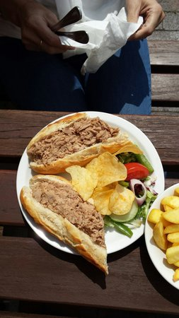 dog and doublet: Tuna baguette