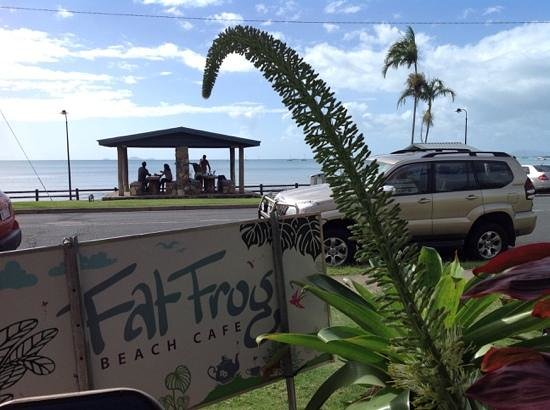 Fat Frog Beach Cafe: View from my seat at the table.