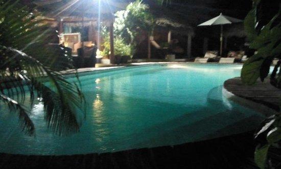Hotel Tropicana : la piscine