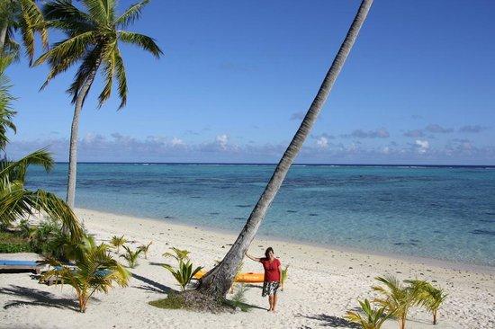 Tamanu Beach : Looking to the beach