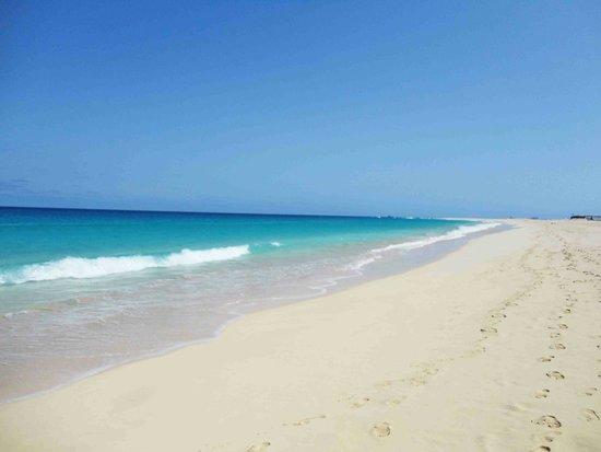 Hotel Oasis Belorizonte : Beach