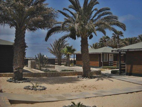 Hotel Oasis Belorizonte : bungalows