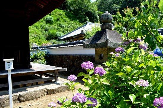 Honkoji Temple: 本光寺