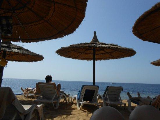 Royal Grand Sharm Hotel: плотные зонтики