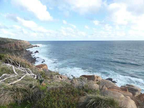 Margaret River Discovery Co. Tours: Cape to Cape