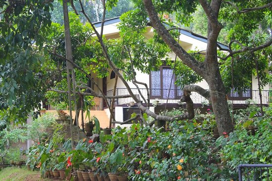 Green View Home Stay : The House