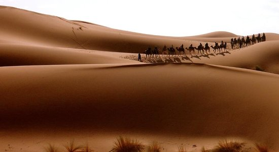 Kasbah Erg Chebbi : looking at the dunes