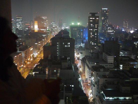 The St. Regis Osaka : 1