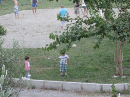 Seastar Aparthotel: volley ball pitch