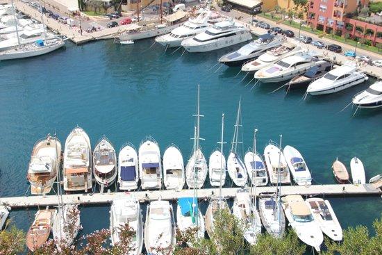 Liven Up Tours : Monaco