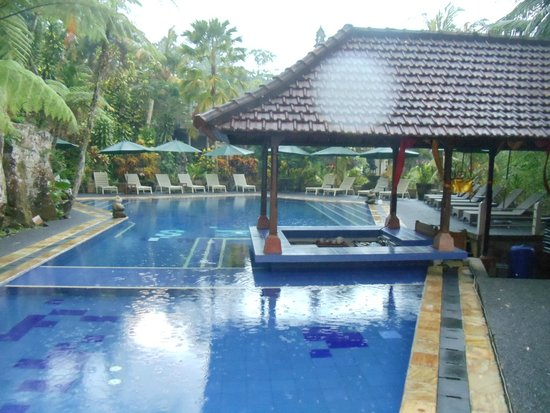 Bali Spirit Hotel and Spa: pool