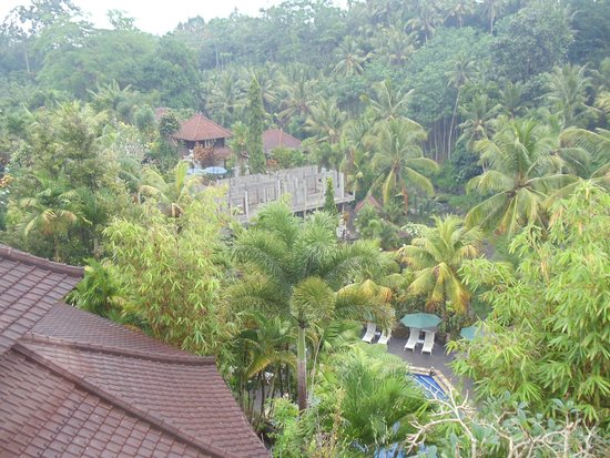 Bali Spirit Hotel and Spa: view from our room