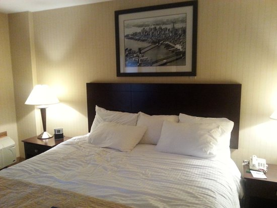 Wyndham Garden Hotel Newark Airport: king bed
