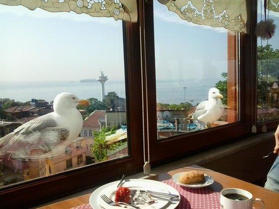 Emine Sultan Hotel: на завтраке