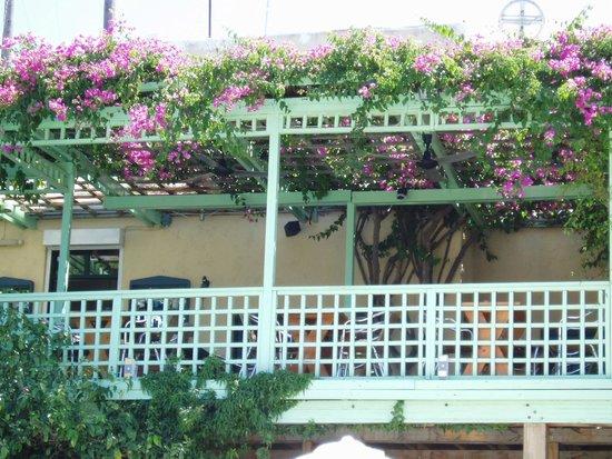Restaurant terras van iokasti vanaf zwembad geien picture of